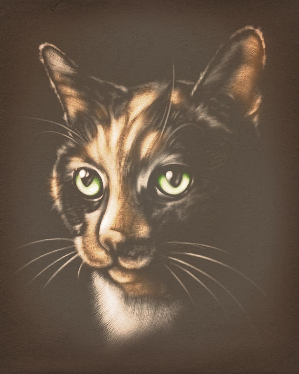 vintage pet portrait - Franny