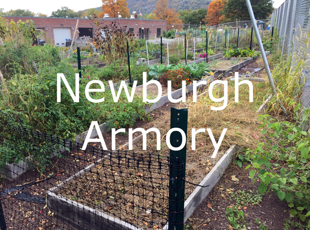Armory (1) text smaller.jpg
