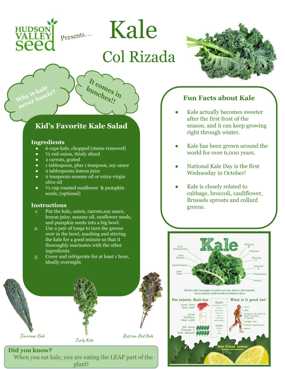 kale of the month.jpg