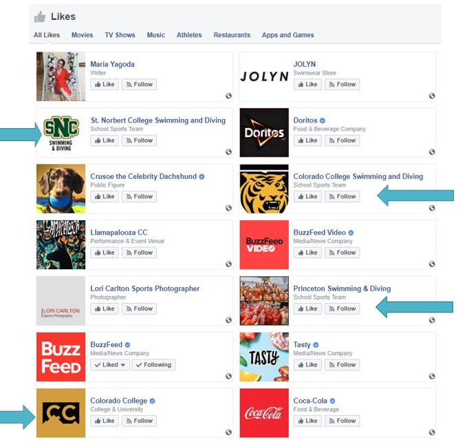 Facebook Follows.png