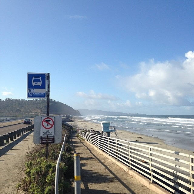 Torrey Pines State Reserve as seen from a bus stop in Del Mar, California. ( Photo by Bill Lascher)