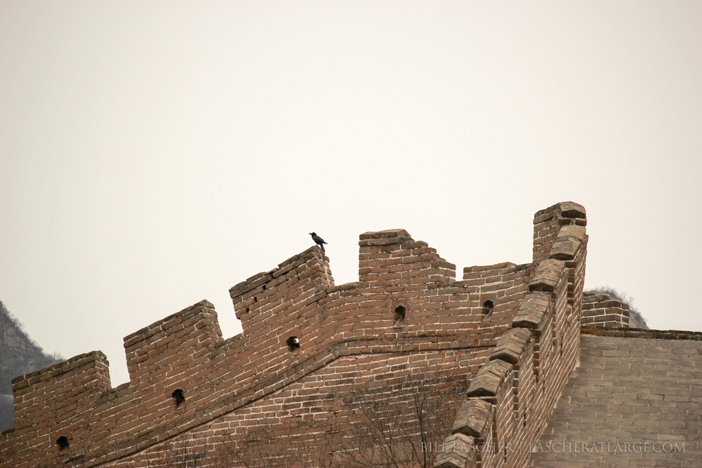 Great Wall and Crow