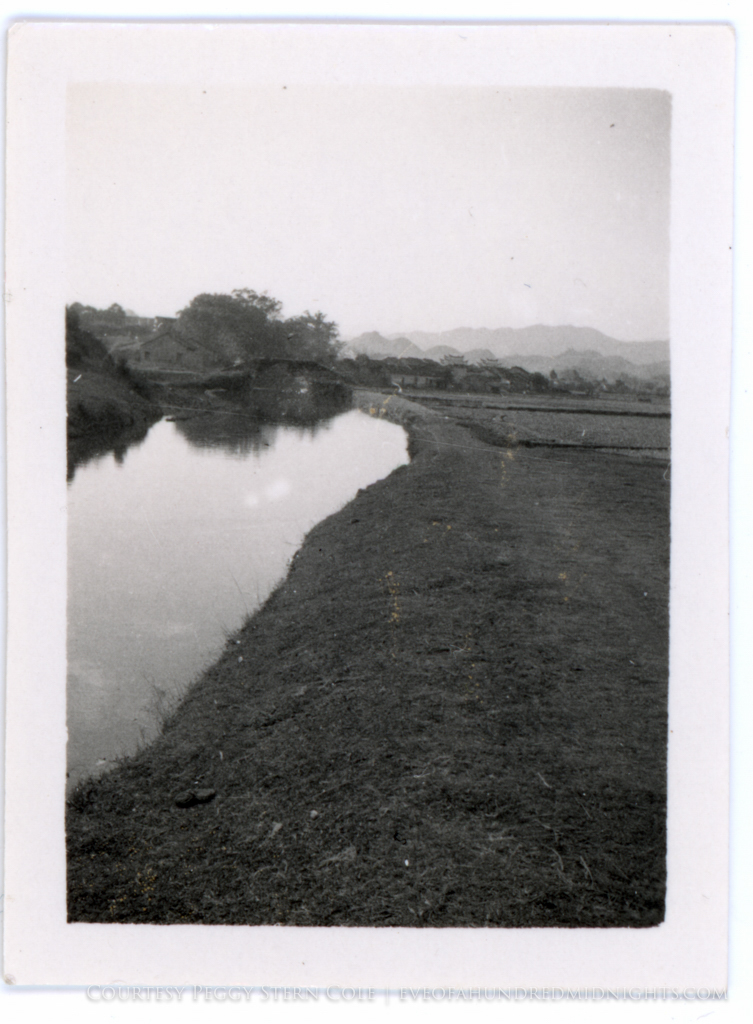 Water and Fields With Chan Family Compound in Distance.jpg