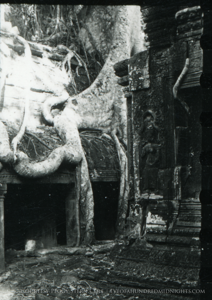 Large Angkor Wat Tree Root.jpg