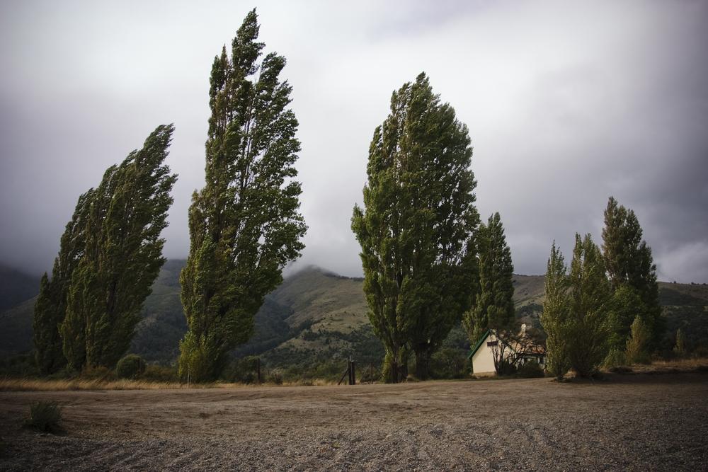 Neuquen, Argentina 2009.