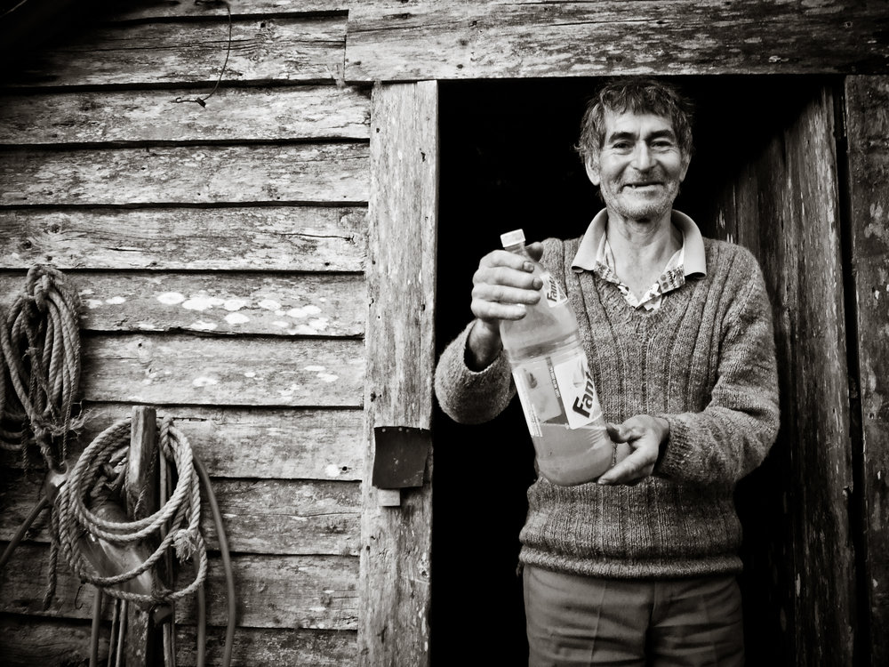 Homemade chicha de manzana (apple cider) is common in Chiloé and Islas Desertores.