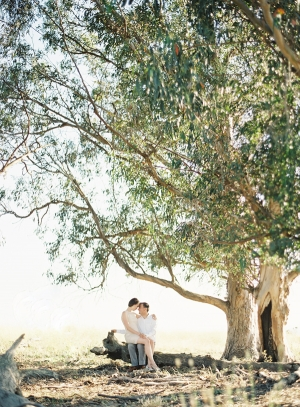 Big-Tree-Engagement-Shoot-300x407.jpg