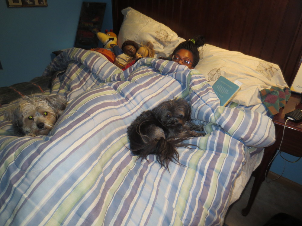 Resting up the night before the signing with a book, my parent's dogs, and my childhood dolls. We were cozied up good!