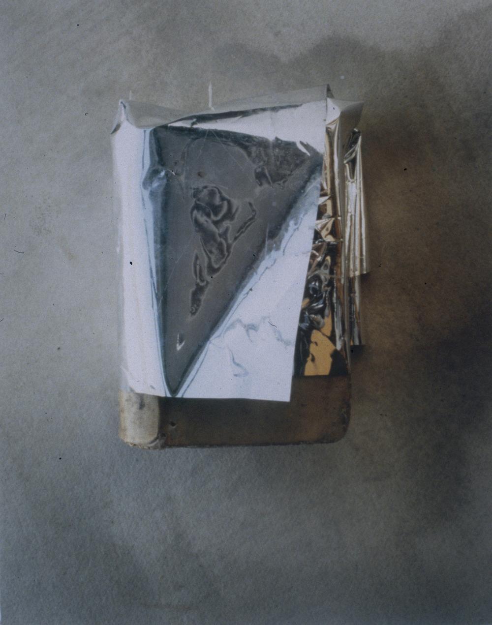 CHAMELEON BOOK 3.jpg