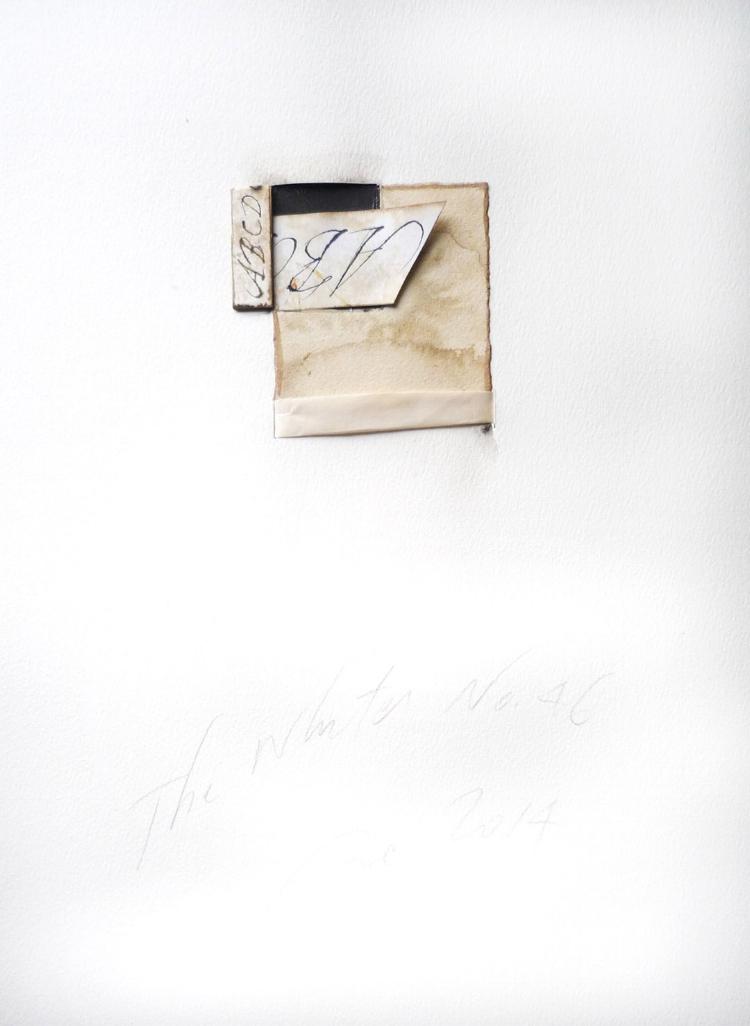 WHITES no. 46.jpg