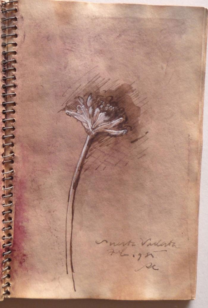 FLOWER 85.jpg