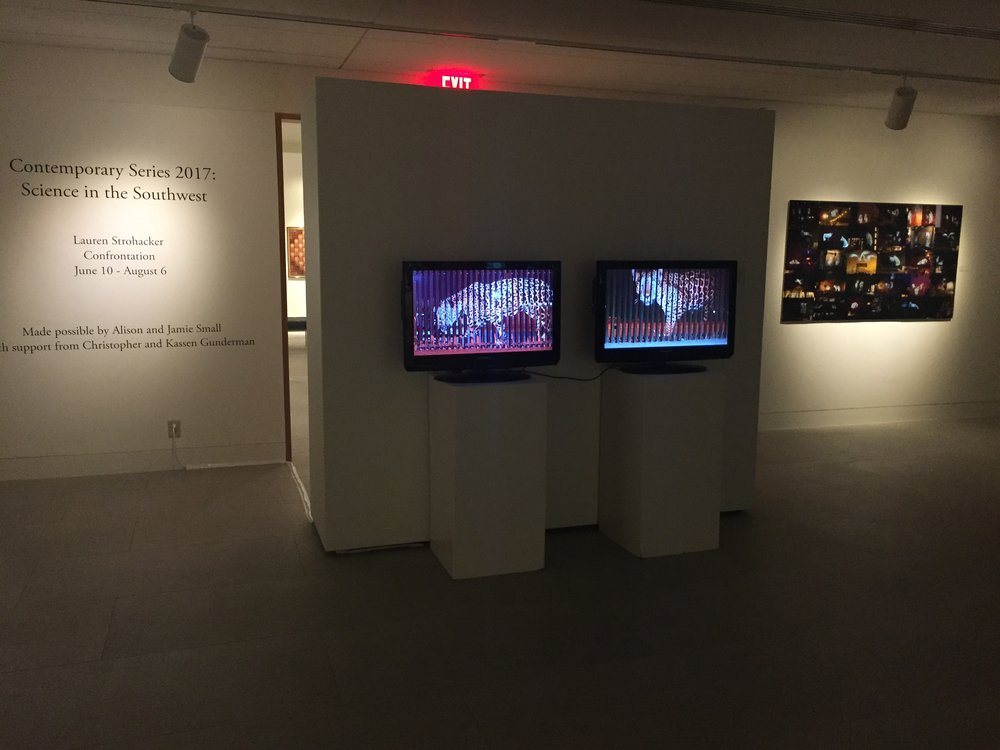 Confrontation , Installation view:  Un-Fragmenting/Des-Fragmentando,  2 channel video, Mary Blanton Kennedy Gallery, Museum of the Southwest, Midland, Texas, 2017