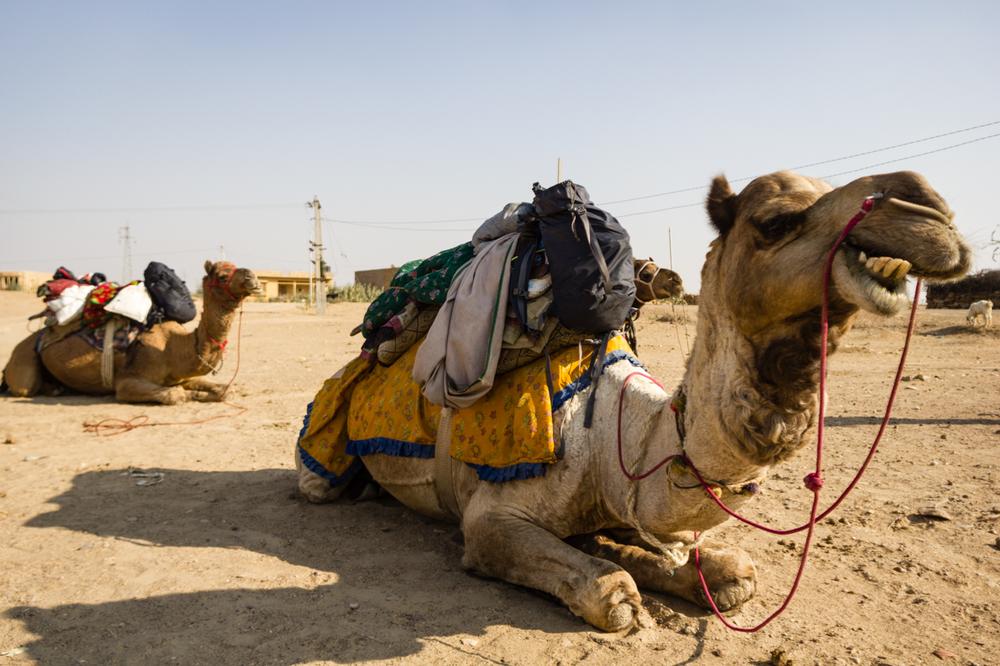 Jaisalmer-1-2.jpg