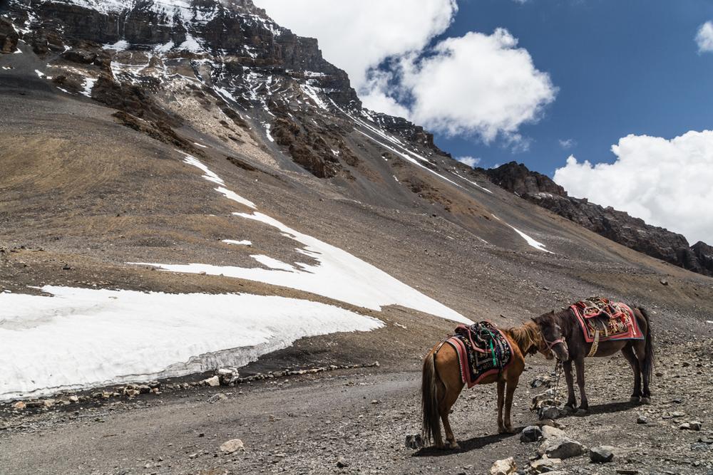 Annapurna Set-121.jpg