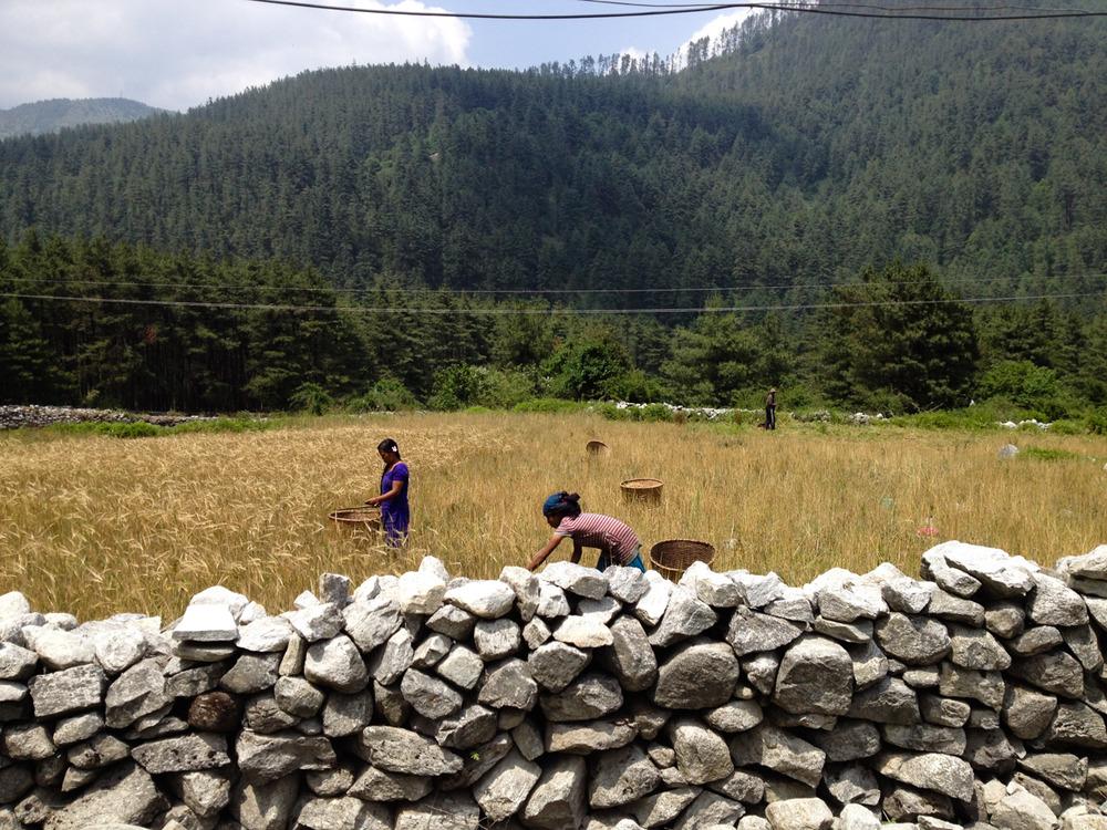 Annapurna Set-158.jpg