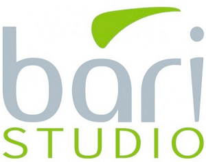Bari Studio Logo sp3.png