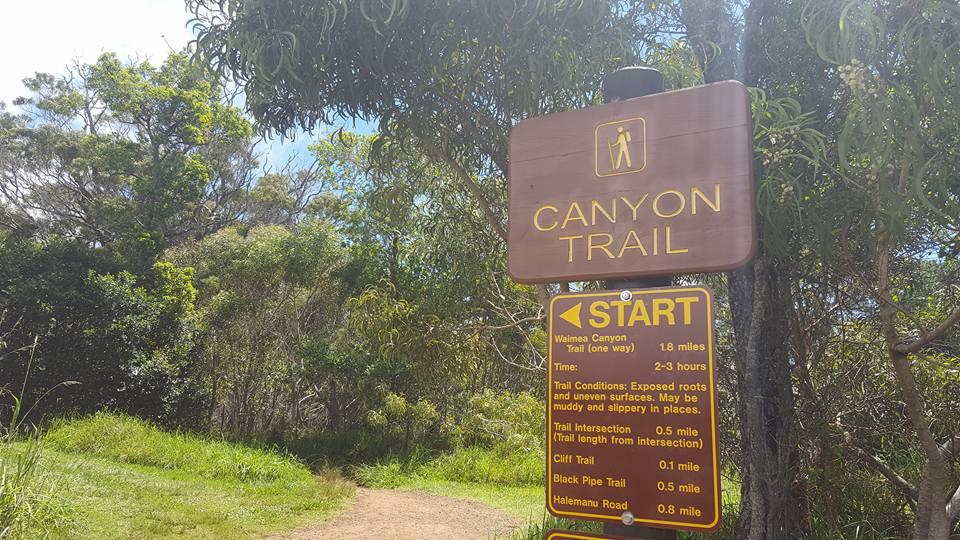 waimean-canyon-trail-start.jpg