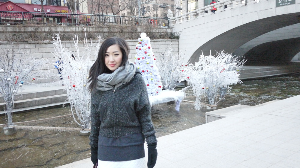 [Cheonggyecheon Stream]