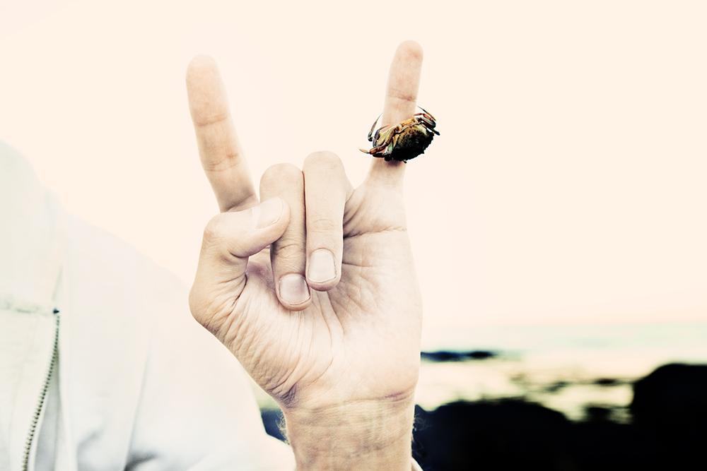 09_crab_rock.jpg