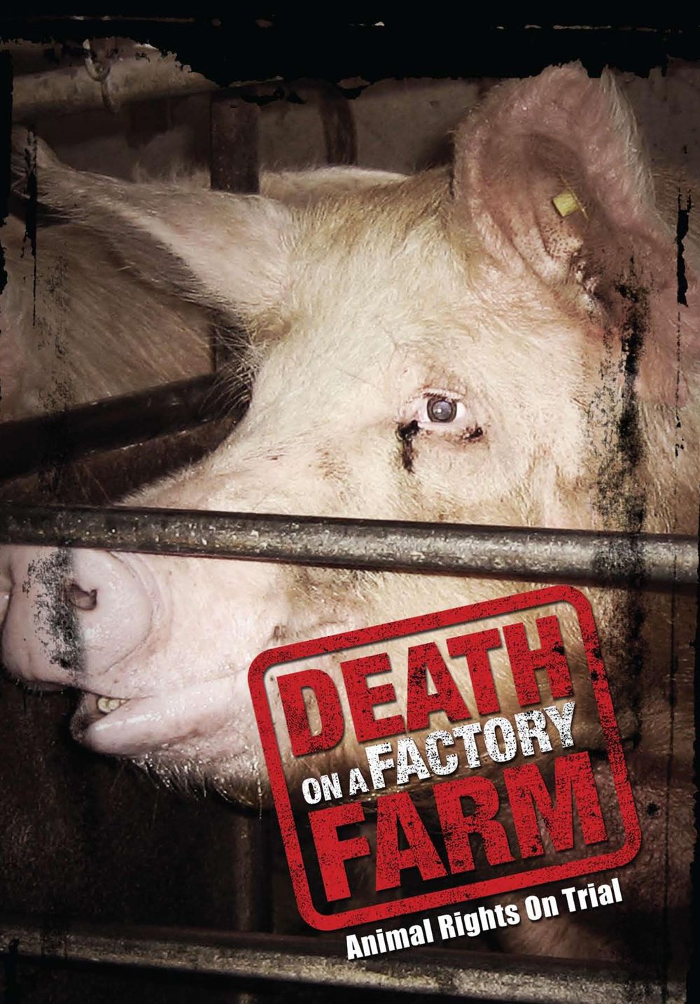 death-on-a-factory-farm poster.jpg