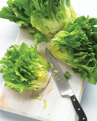 ESCAROLE BASICS
