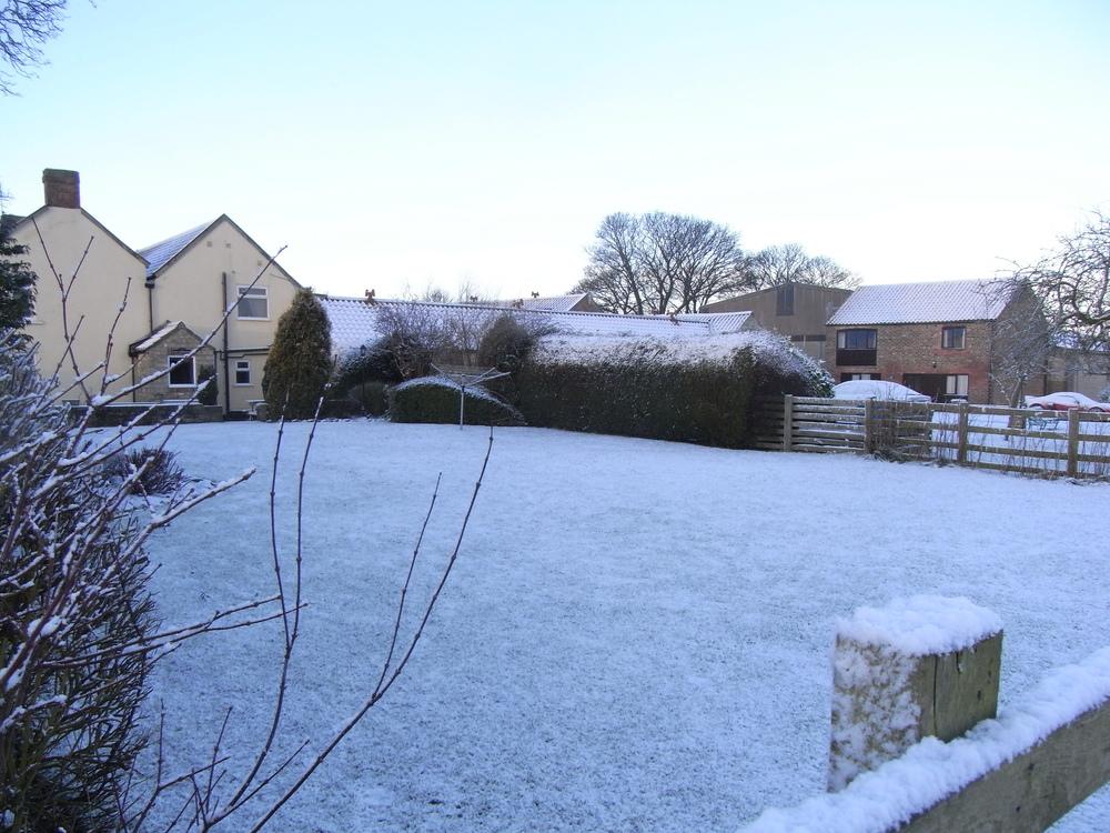 winter 033.JPG