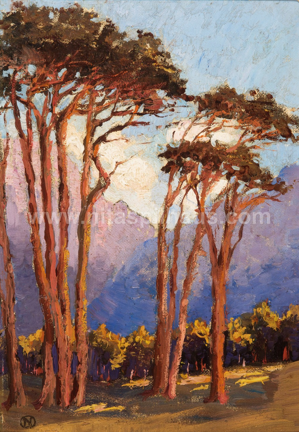 Stone Pines in front of mountains Oil on board 25.6 x 17  Collector 32