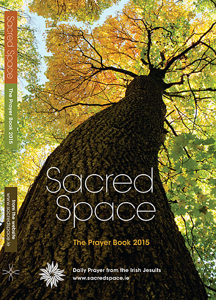 Sacred-Space-2014_Veritas.jpg