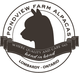 Pondview Farm Alpacas