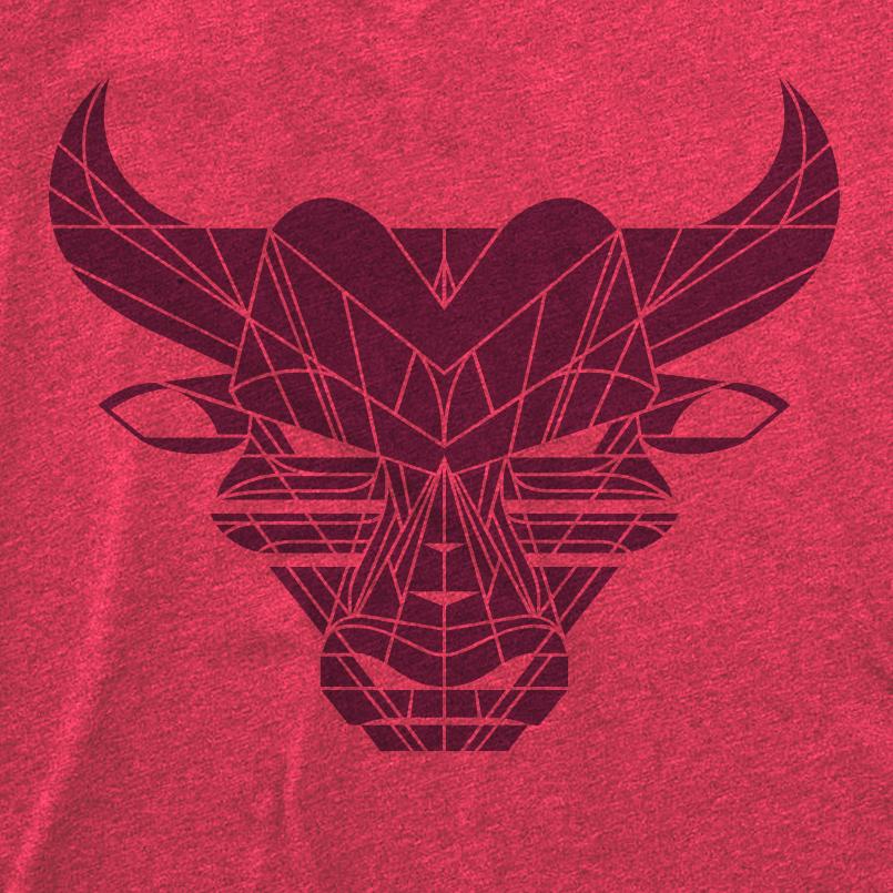 bull-shirts-model-dribbble3.jpg