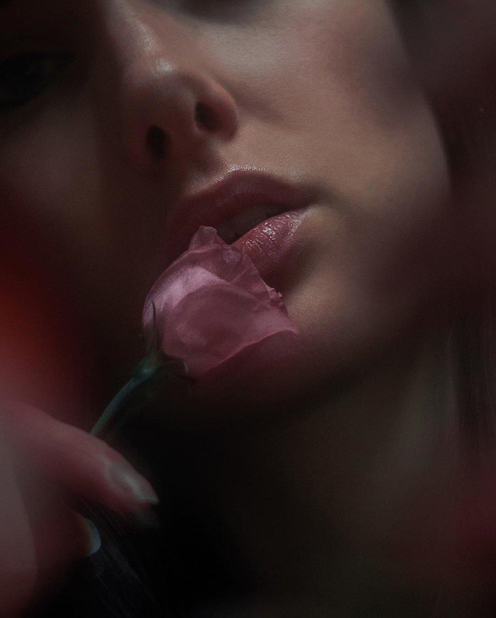 pam-rose.jpg