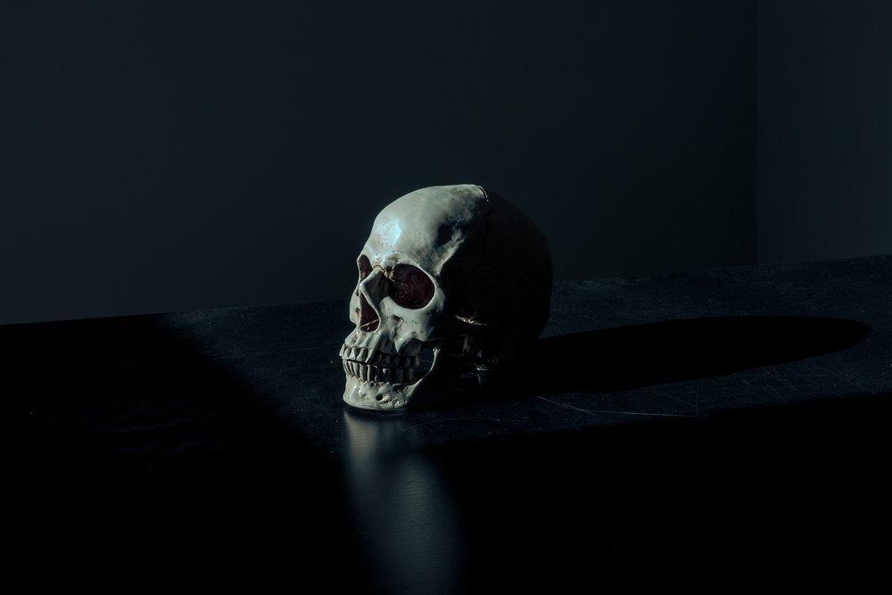 macquarrie-skull.jpg