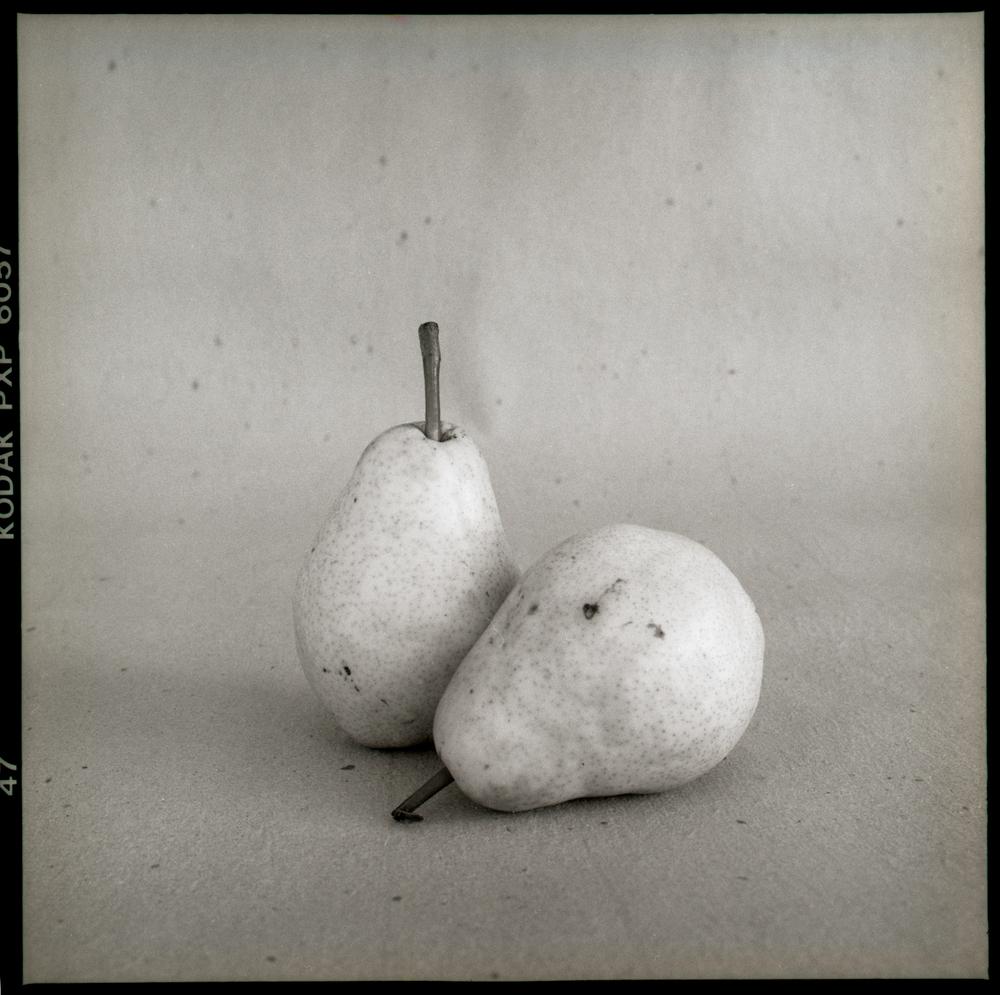 The pears 98-15-1.jpg