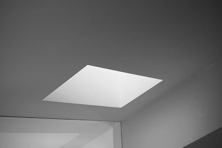 Skylight Detail B&W.jpg