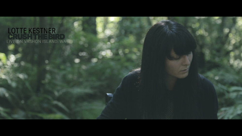 LOTTE KESTNER | CRUSH THE BIRD    This intimate performance was filmed live, in a single take as the sun was setting in the woods of Vashon Island.