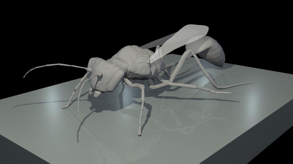 wasp.jpg