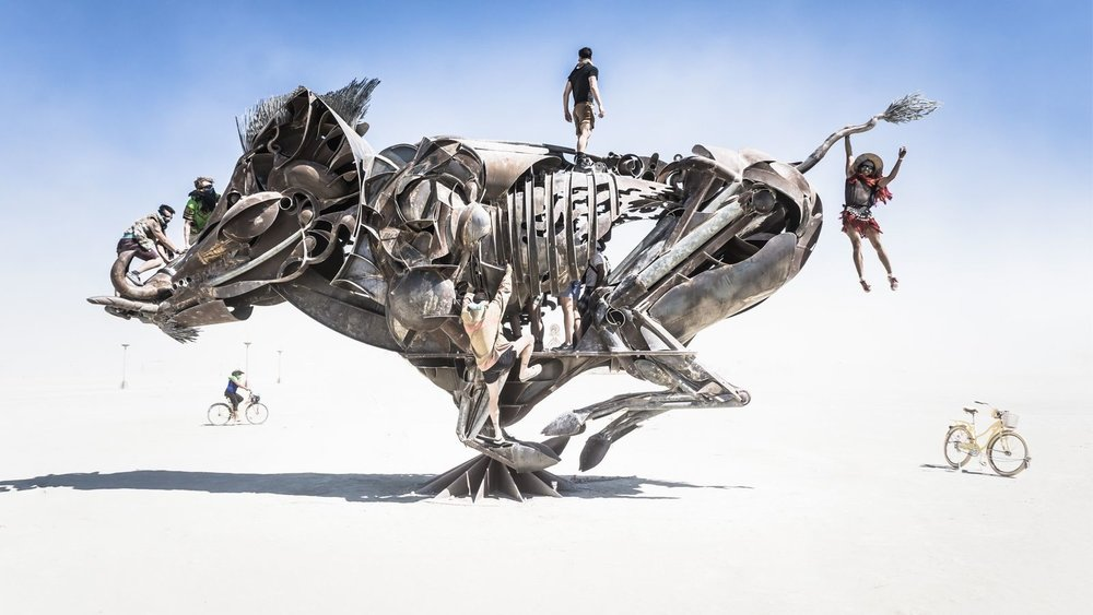 burning_man_2016_art.0.0.jpg