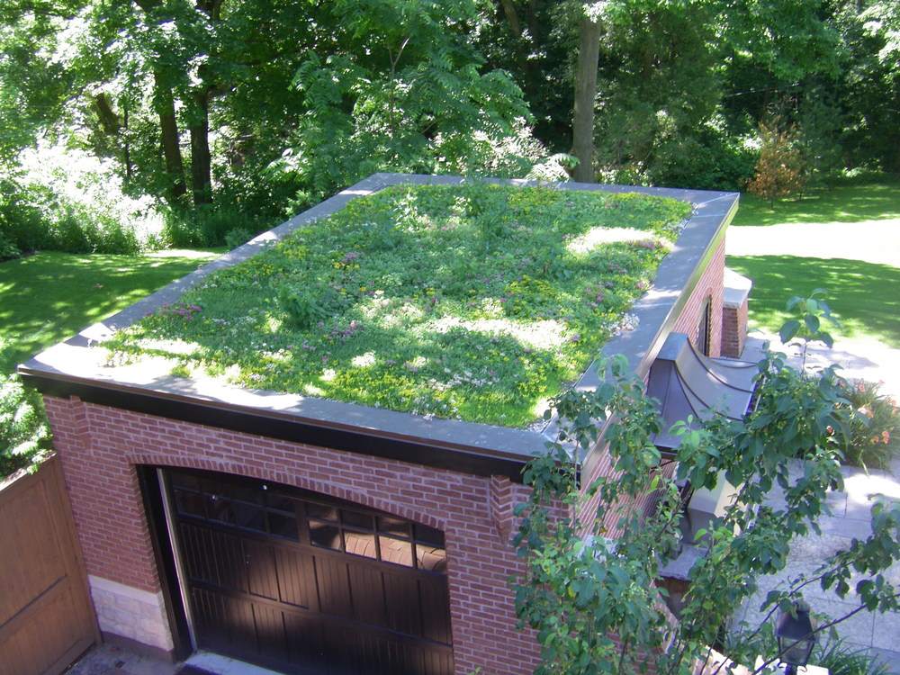 Rosedale - South Drive Garage Greenroof .jpg