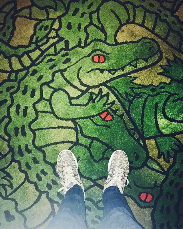 Where do I buy crocodile carpet? Asking for a friend. 🐊🐊