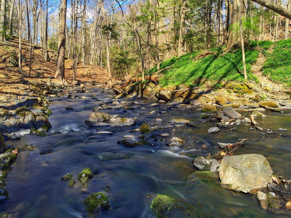 Bubbling Spring Stream