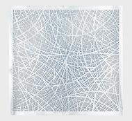 Reticulating Lines II.jpg