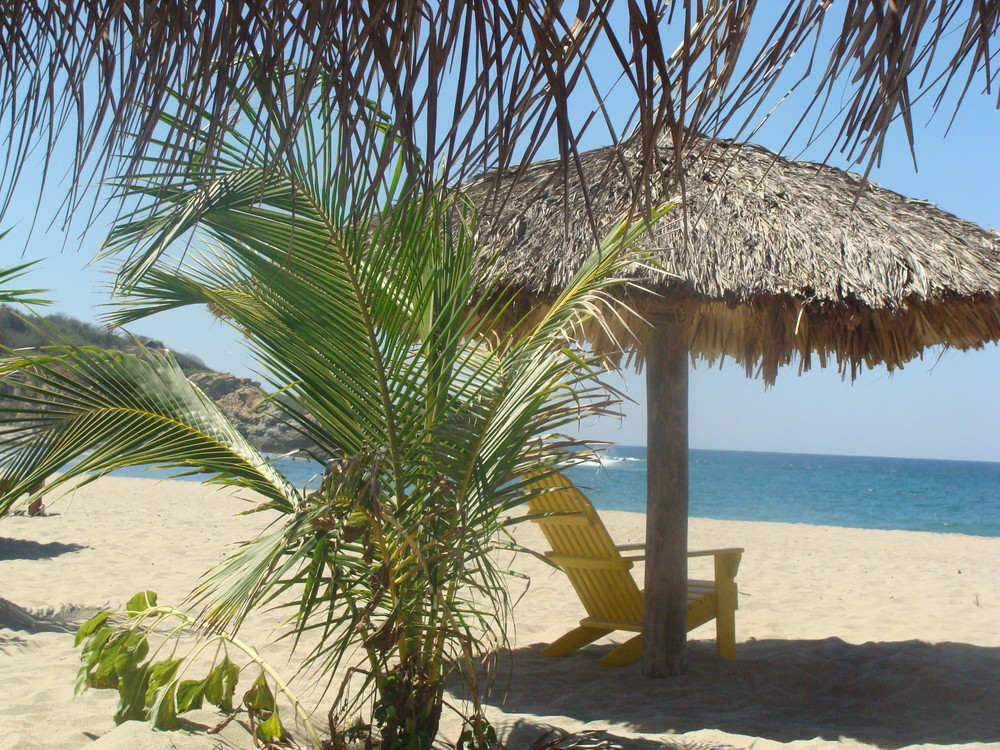Relax under a shaded palapa