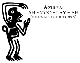 Incase you are wondering the proper pronunciation and definition of Azulea...