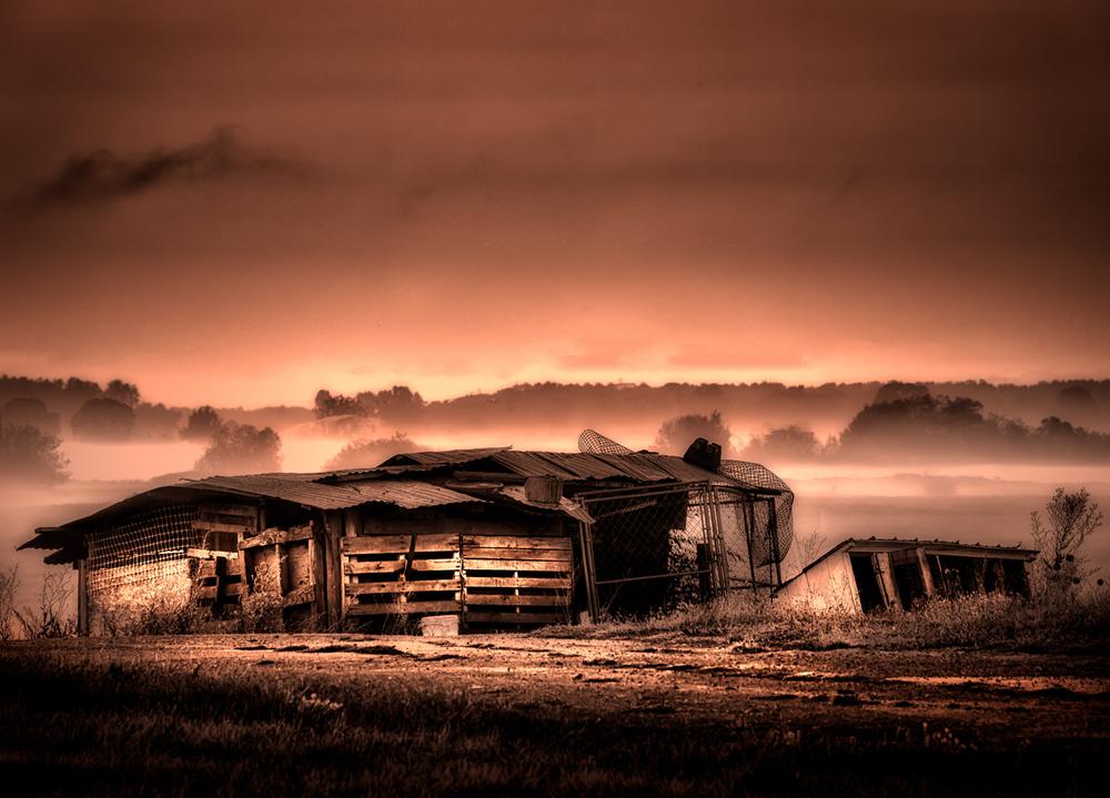 Farm, #11
