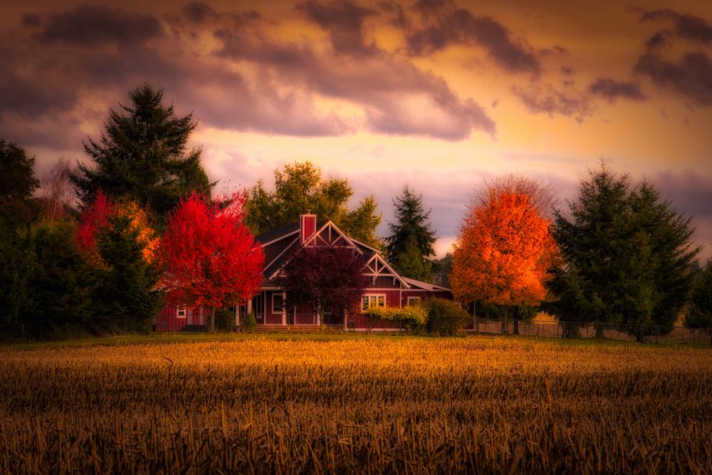 Farm, #10