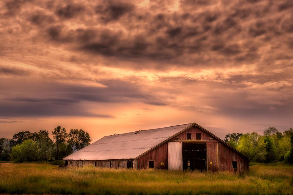 Farm, #1