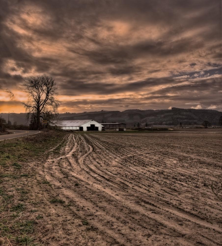 Farm, #22