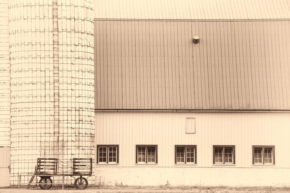 Farm, #23