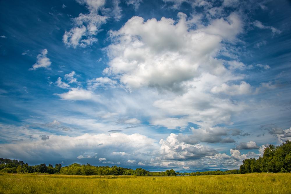 Sky, #5