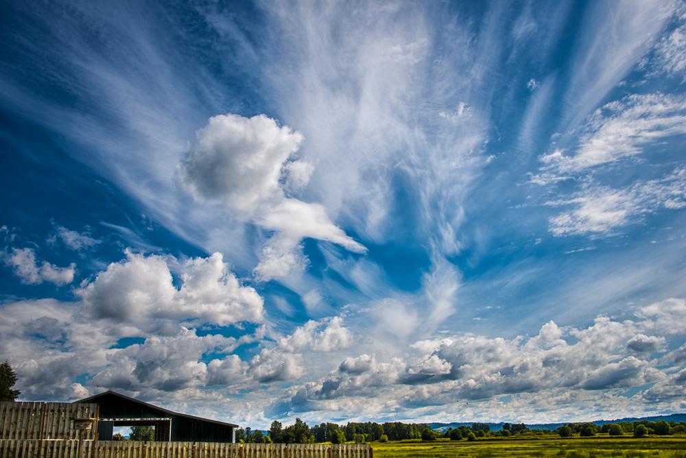 Sky, #1